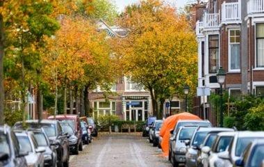 Straat met bomen en auto's