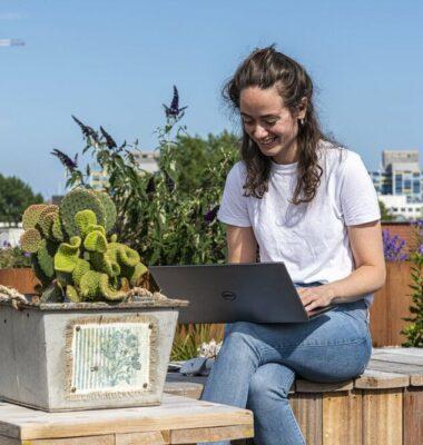 Met laptop op het dak